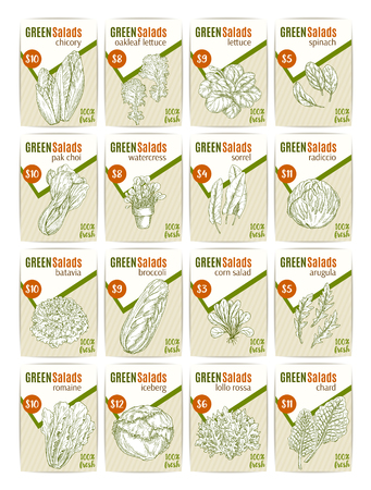 Vector sketch price cards for salads vetables