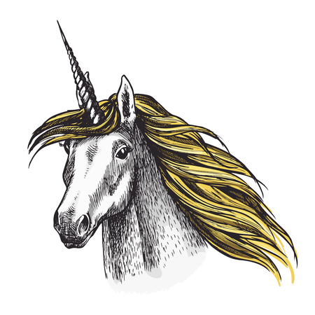 Unicorn head color sketch icon of fairy tale mystic horse with horn. Vector magic unicorn horse muzzle with waving mane for equine sport or equestrian races and contest exhibition design