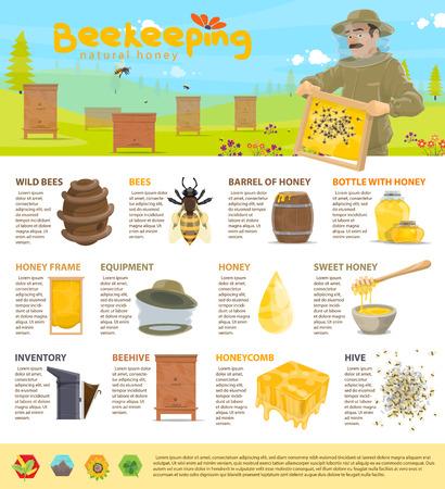 Honey beekeeping vector infographics Vettoriali