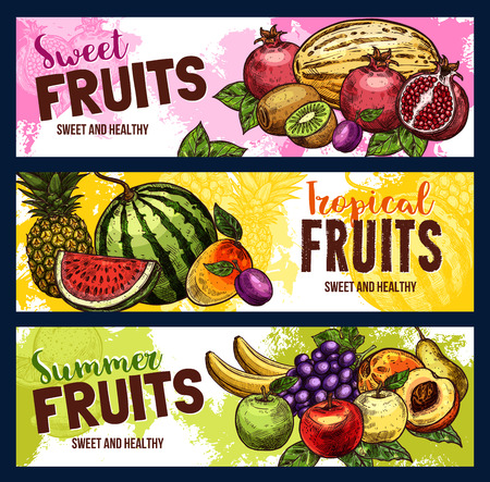 Fruits sketch banners of garden and tropical fruit harvest. Vector fresh pineapple, watermelon or exotic banana and apple, plum or pear and grape, lemon and citrus orange or apricot Ilustrace