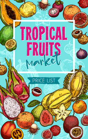 Vector fruit market sketch exotic fruits price Иллюстрация