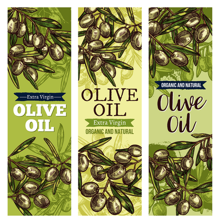 Olive oil label with green fruit and leaf sketch background.