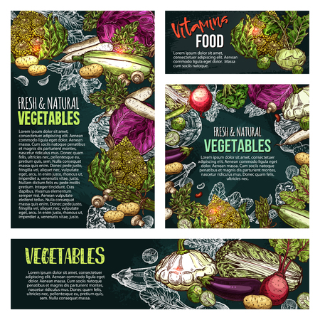 Fresh vegetable and mushroom chalkboard banner background designs Illustration