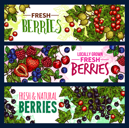 Berry with leaf banner background design of wild and garden fruit Ilustracja
