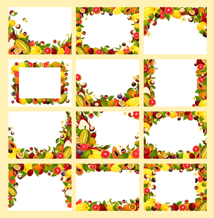 Fruit frame with fresh exotic and tropical berry Vector illustration.