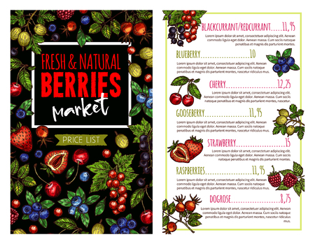 Berry and fruit banner for price list template Vector illustration.