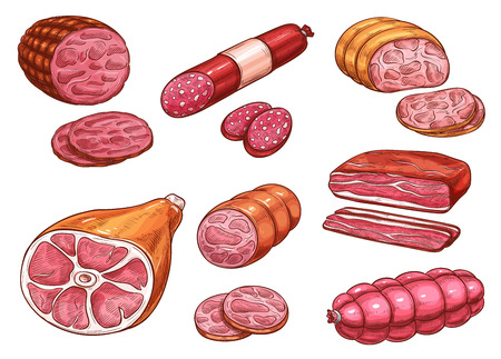 Sausage sketch of beef and pork meat product Vector illustration.