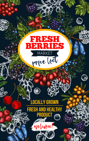 Berry blackboard banner with fresh wild fruit Vector illustration.