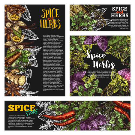 Spice and herb, food seasoning blackboard banner Vector illustration. Ilustracja