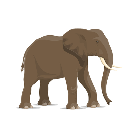 Elephant animal cartoon icon of african savanna mammal. Gray elephant standing sideways isolated symbol for african safari hunting, zoo mascot or savanna wildlife adventure themes design