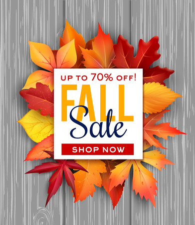 Autumn sale vector poster fall foliage leaf bunch.