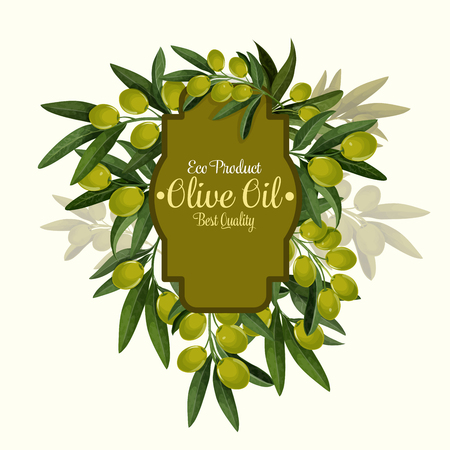 Vector olives poster for extra virgin olive oil