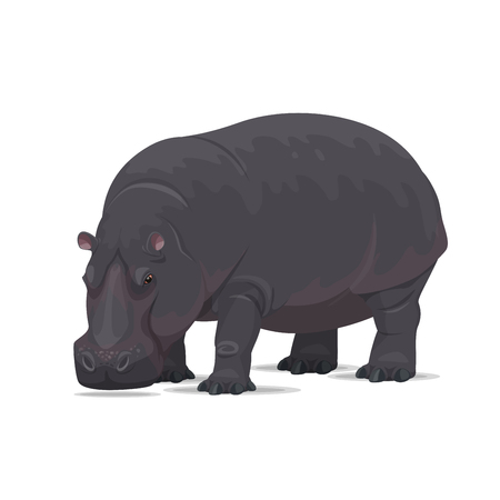 Hippopotamus vector African animal flat icon