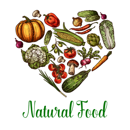 Vector natural vegetables food sketch heart poster