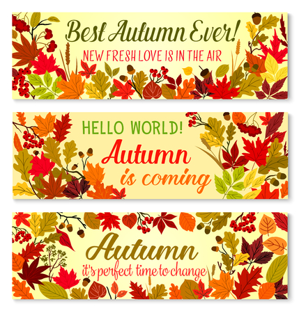 Autumn banner of fall season forest nature frame Illustration