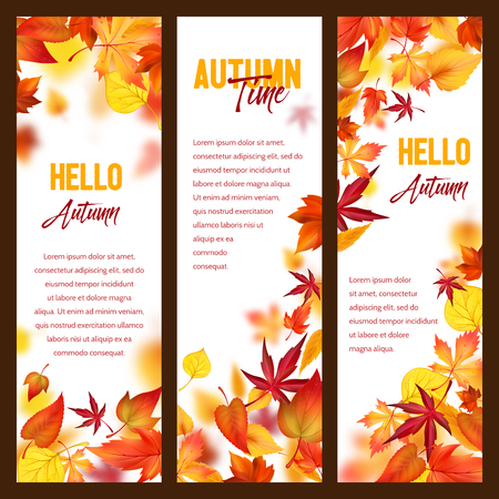 Autumn vector banners of fall leaf falling foliage Çizim