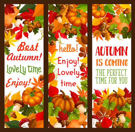 Autumn holiday of Thanksgiving Day banner set Standard-Bild - 101255136