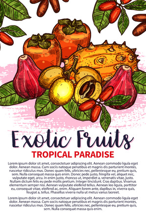 Exotic fruits sketch poster