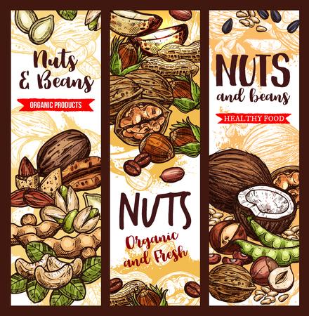 Nüsse und Bohnen Skizze Poster Standard-Bild - 101009747