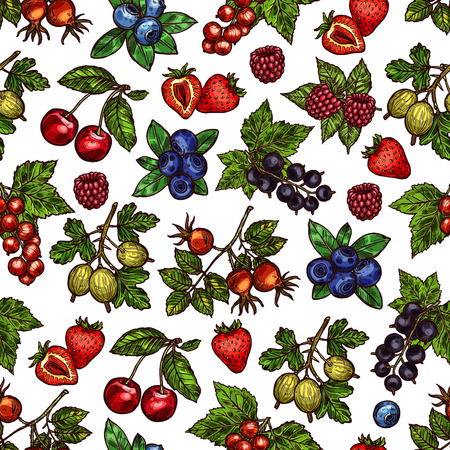 Vector set with seasonal summer berries. Strawberry or currant, blueberries and raspberries, cherries or gooseberry and dogrose. Vector pattern with colorful berries isolated on white background