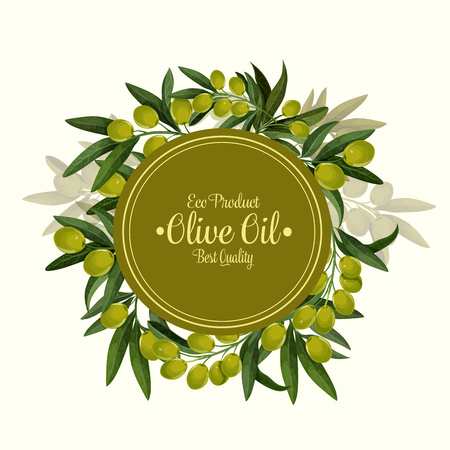 Eco product olives poster for olive oil organic natural product. Vector design of green olive fruits and leaves for best quality olive oil extra virgin product or Italian or Spanish cuisine Иллюстрация