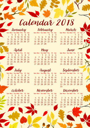 Autumn leaves calendar 2018 template or fall foliage vector design of maple, oak or birch and rowan tree leaf. Foliage bunch of poplar, beech or elm and aspen seasonal autumn leaves bunch.