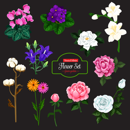 Flower bunch icon set of garden and house flowering plant.