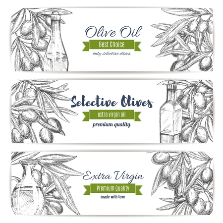 Olive oil vector banners of sketch olives