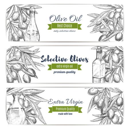 Banners de vector de aceite de oliva de aceitunas de bosquejo
