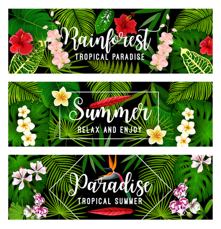 Summer tropical vacation and holiday banner Illustration