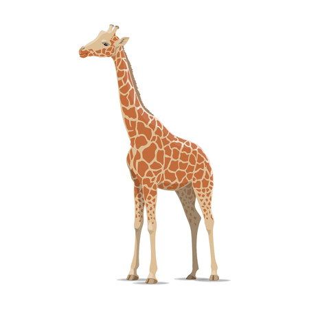 Giraffe vector wild animal isolated icon