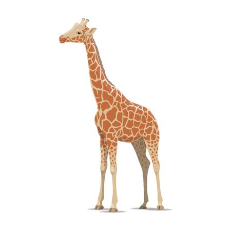 Giraffe vector wild animal isolated icon