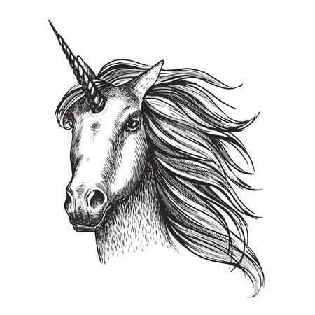 Unicorn horse vector sketch fairy tale animal head