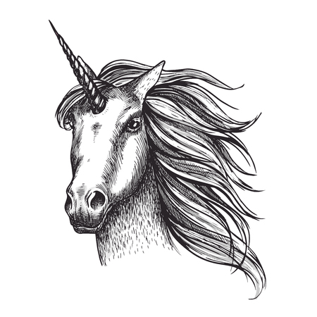 Unicorn horse vector sketch fairy tale animal head 스톡 콘텐츠 - 102344056