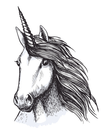 Unicorn horse head sketch for tattoo design Ilustração