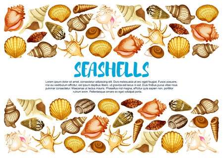 Seashell banner with marine mollusc shell border Illustration
