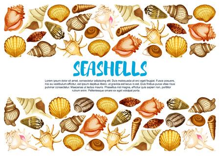 Seashell banner with marine mollusc shell border Illustration