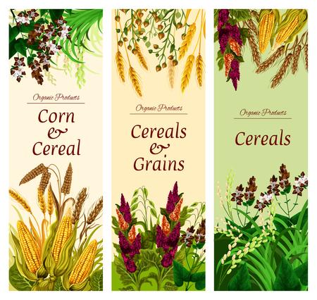 Bannière de céréales, de céréales et de légumes d'aliments sains Vecteurs