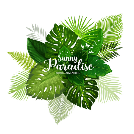 Summer tropical adventure poster with green leaf of palm. Exotic tree and plant foliage banner for hawaiian vacation or paradise holidays beach party design with fern, monstera, fan and areca palm