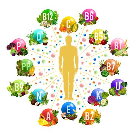 Affiche sur les sources d'aliments en vitamines et minéraux pour une alimentation saine et une conception de la nutrition diététique. Silhouette humaine, entourée de fruits frais, de légumes et de noix, d'herbes et de céréales pour la santé et la conception de super aliments