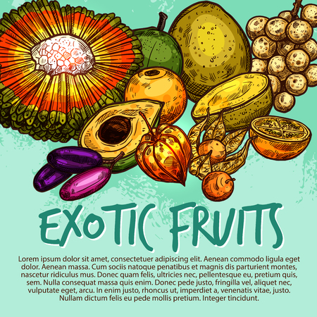 Exotic fruit and tropical berry sketch poster