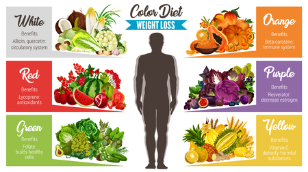 Weight loss color diet banner of fresh natural food. Vegetable, fruit and nut, mushroom, cereal and green salad leaf poster for healthy eating, dieting and vegetarian nutrition themes design