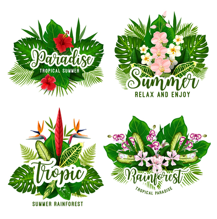 Tropical paradise card set for summer vacation or exotic holiday design. Green leaf of jungle palm and plant with flower of orchid, hibiscus and strelitzia for Hawaiian beach party invitation template
