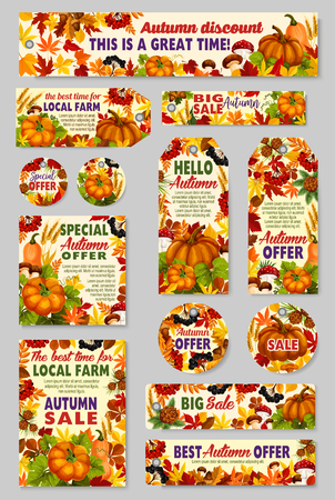 Autumn sale shop or farm market vector discount