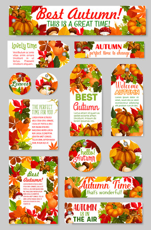 Autumn tags acorn leaf, pumpkin vector greeting 일러스트