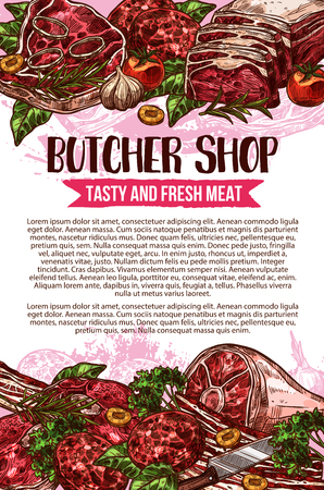 Butcher shop vector sketch meat poster