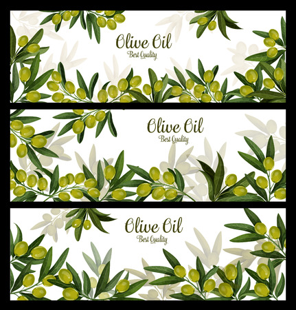 Olive oil best quality vector banners Ilustrace