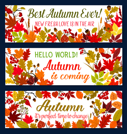 Autumn season banner with fallen leaf frame. Yellow, orange and red foliage of september plant and tree border, adorned by acorn and rowan berry for fall season welcoming poster design Illustration