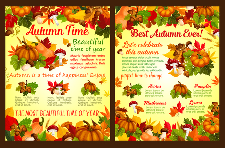 Autumn acorn leaf, pumpkin vector fall poster