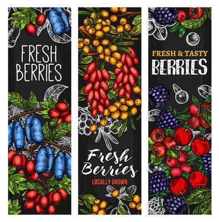Wildbeere oder frisches Obst-Tafelfahnenentwurf